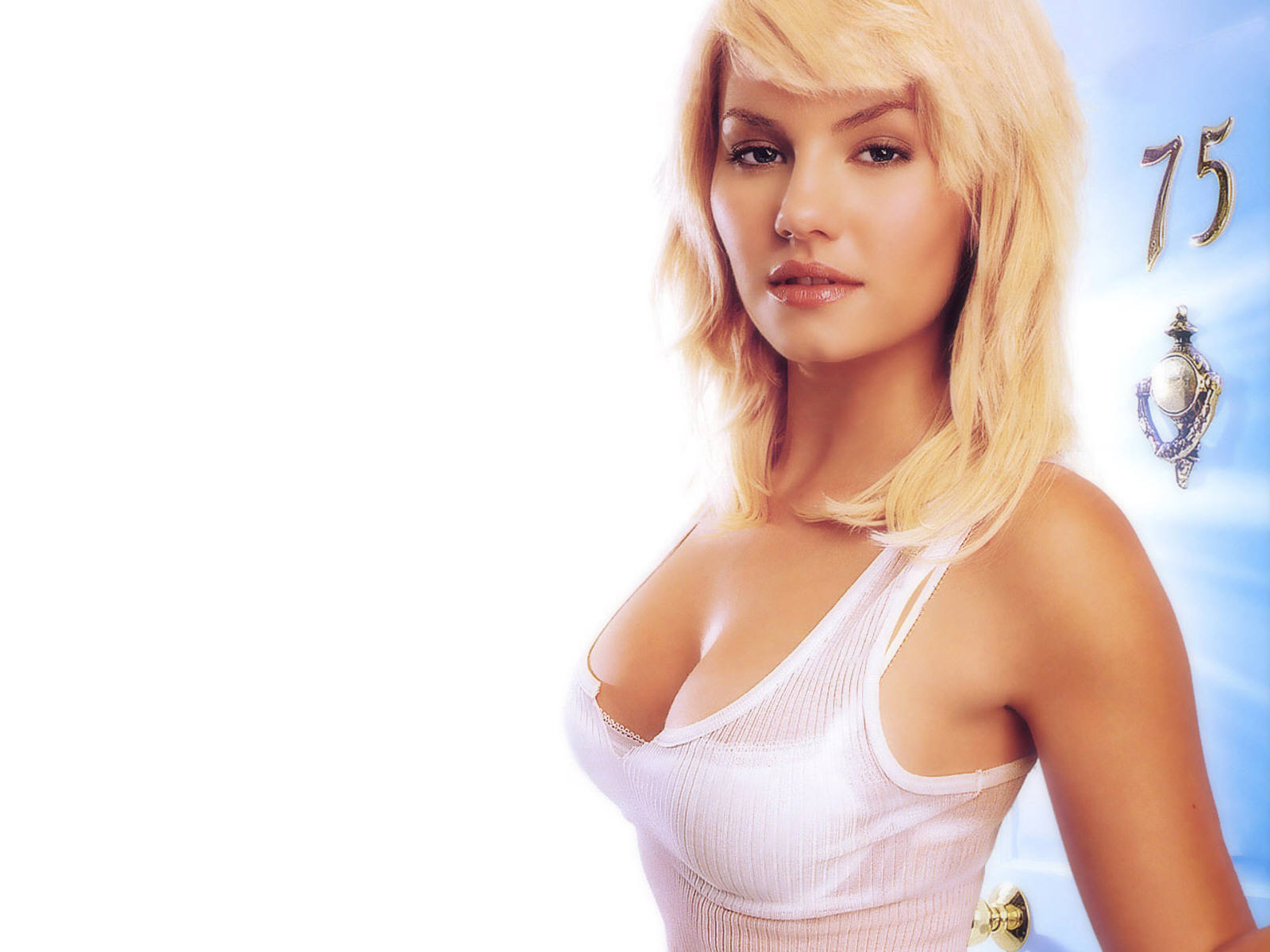Elisha Cuthbert Hot and Sexy Wallpapers #1