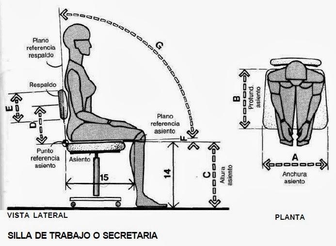 Dibujo t cnico y algo m s antropometr a for Medidas antropometricas del cuerpo humano