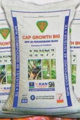 CAP GROWTH BIG NPK COMPOUND 48 PERANGSANG BUAH