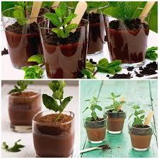 Vasinho de chocolate, faça você mesmo, cozinha, brigadeiro de colher, fazendinha, festa junina, amendoim, dicas e sugestões, docinhos, doces