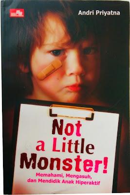 Not a Little Monster, Memahami, Mengasuh dan Mendidik Anak Hiperaktif