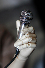 Tata's Paradise bjd microphone