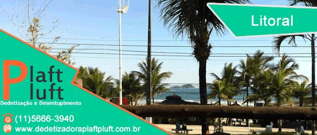 Dedetização no Litoral | Dedetizadora | São Paulo | Guaruja | Enseada | Pitangueiras | Santos