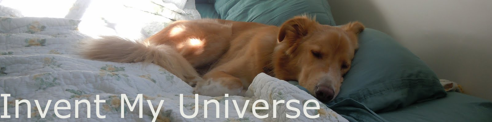 Invent My Universe