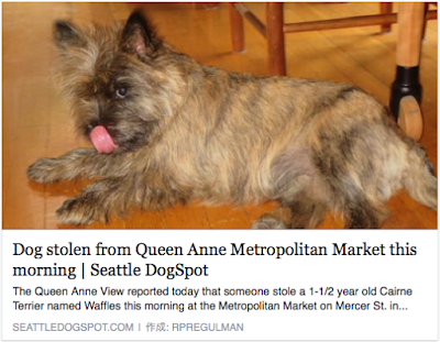 http://www.seattledogspot.com/lost-dogs-listings/dog-stolen-from-queen-anne-metropolitan-market-this-morning/