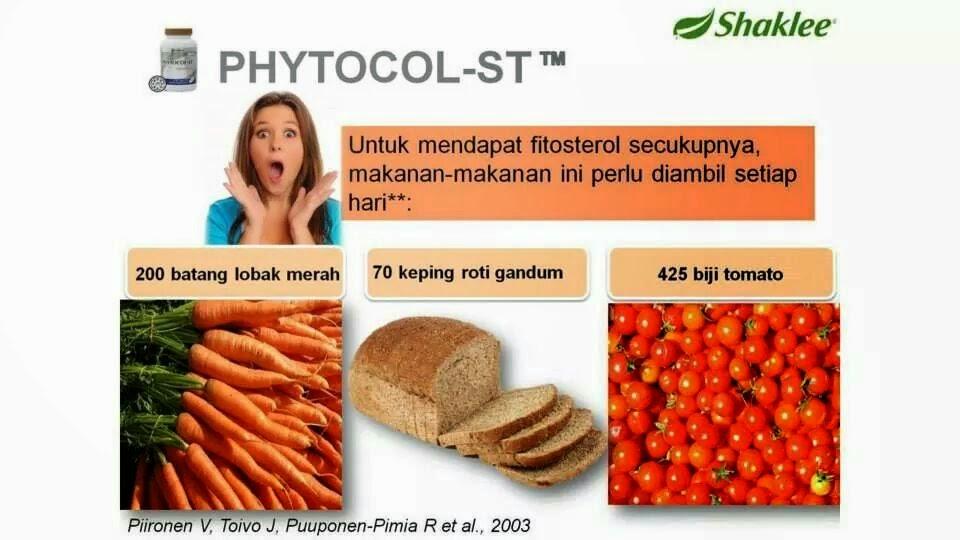 makanan untuk dapatkan fitosterol
