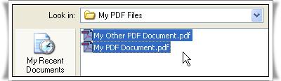 solid converter PDF1.jpg