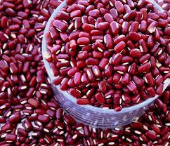 Leguminosa de cor vermelha e pequeno tamanho, o feijão azuki possui grande valor nutricional.