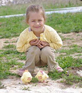 цыплята, курочка, авторские игрушки,  игрушки ручной работы, петушок, птички