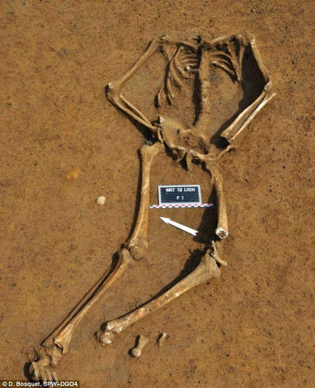 FDRA - Historia de la Defensa: Arqueología: El esqueleto de un ...