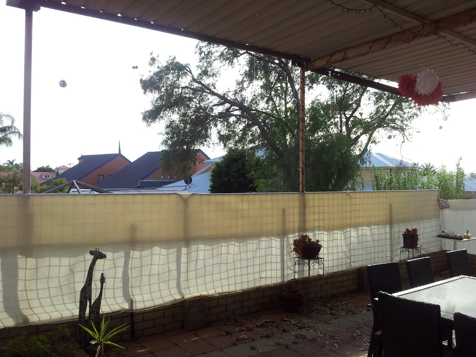 jarrah jungle clearing the backyard and reno rubble