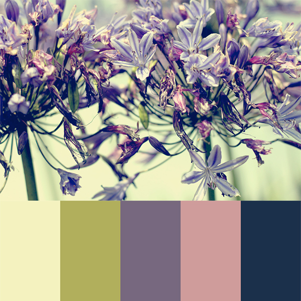 Selecting Your Own Color Scheme