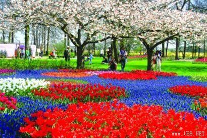Saya suka bunga, sy suka alam sekitar,sy bersyukur melihatnya,kerana saya akn brasa dkat pdNya!