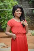 Samyuktha Hornad Glam pics-thumbnail-19
