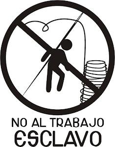 HAS NACIDO LIBRE.