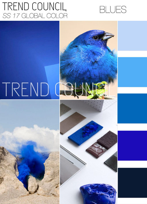 TRENDS // TREND COUN
