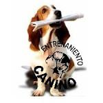 *Escuela para perros*