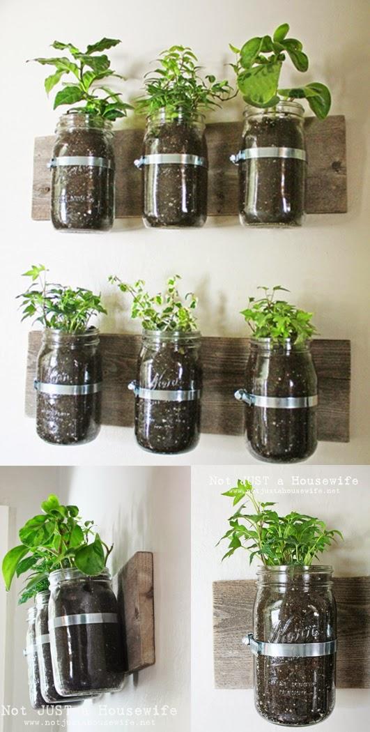 Especias y hierbas arom ticas en casa decoracion casas for Plantas aromaticas de interior