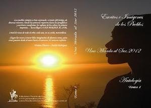 Una Mirada al Sur, 2012. Gracias Pasiòn de Escritores por editar mis poesìas.