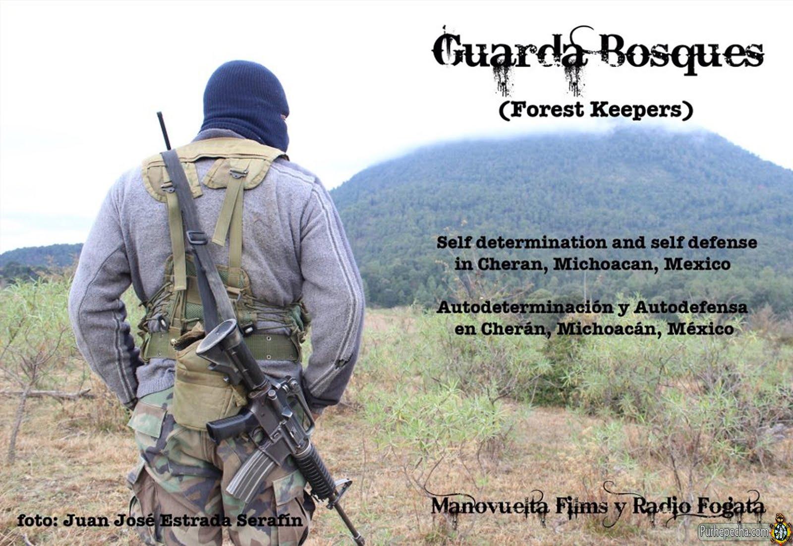 Guarda bosques