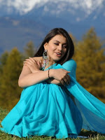 Hansika Motwani latest saree photos stills Gallery-cover-photo