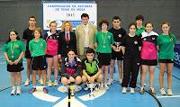 Campeonato de Asturias juvenil 2013