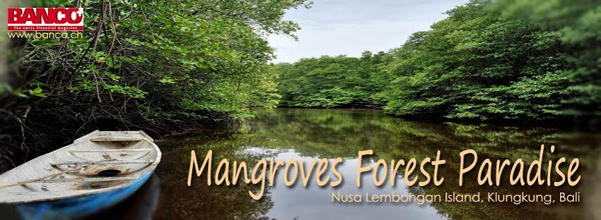 NUSA LEMBONGAN MANGROVE TOUR