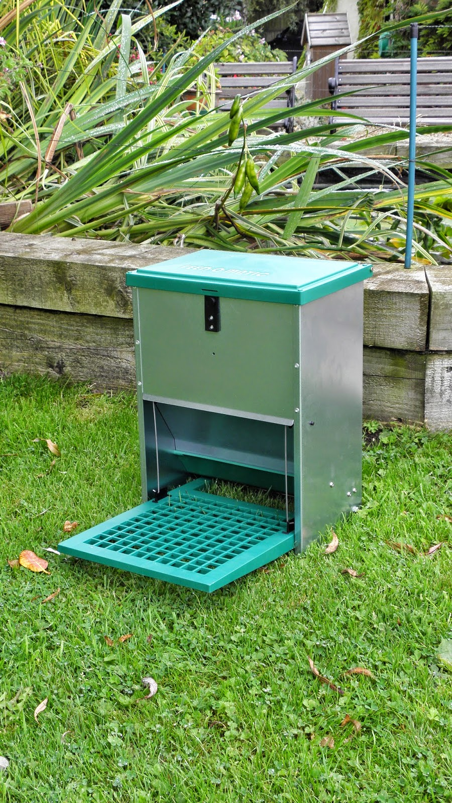 Anti-Vermin Feeders for Chickens