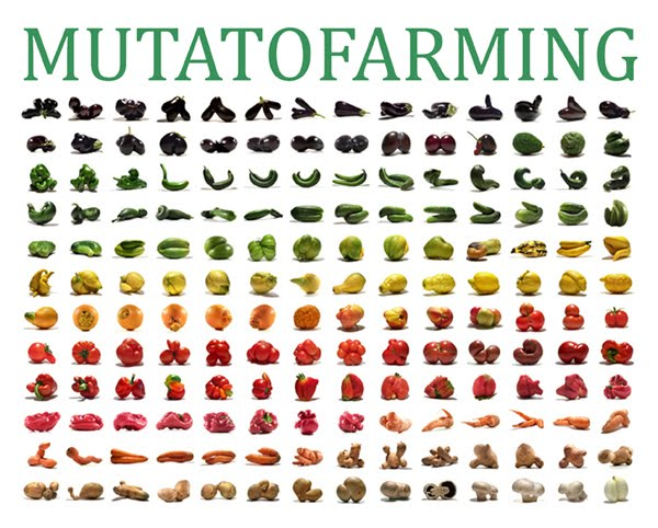 mutatofarming