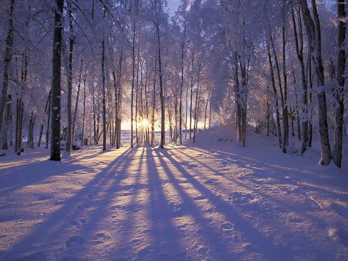gambar-gambar Musim salju terindah