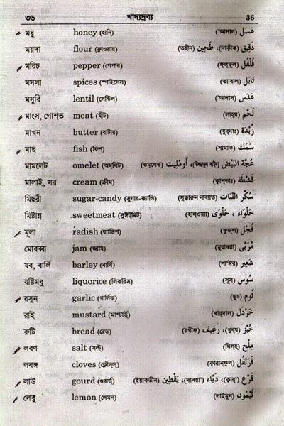english to bangla word book pdf