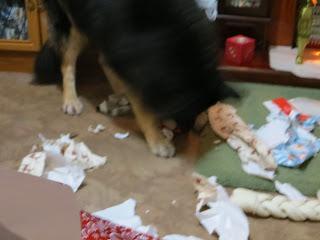Trojan, presents, christmas