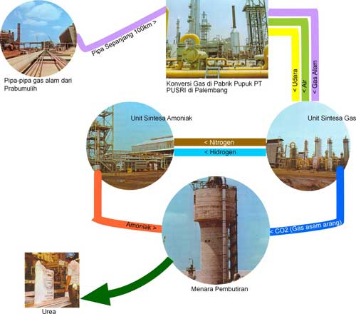 Industri pupuk urea pembuatan pupuk organik ccuart Choice Image