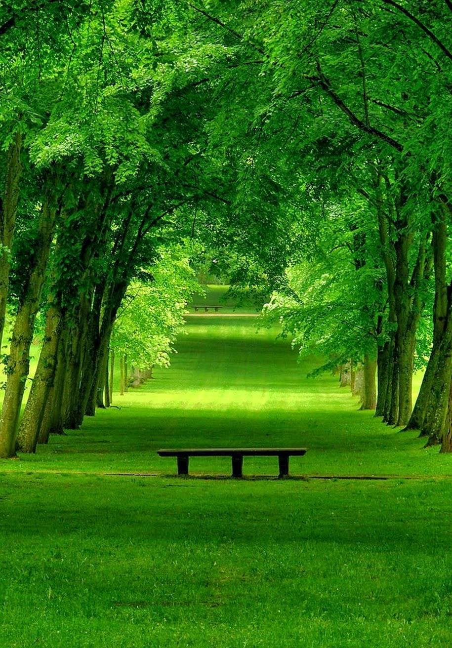 Park in Chamarande, France.