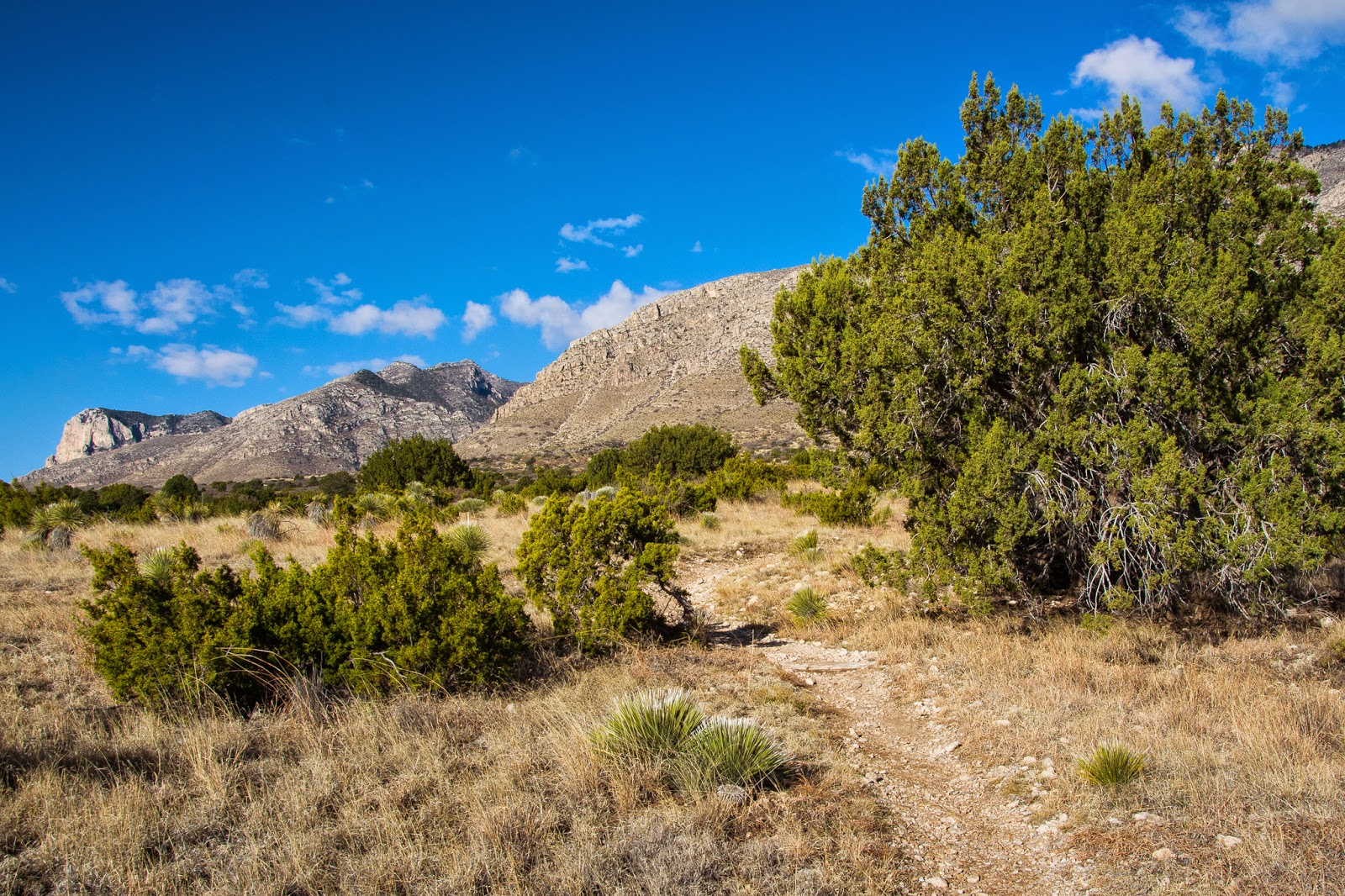 Smith Spring Trail, Guadalupe Mountains National Park