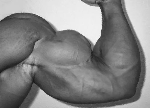 3 Things You Need to Consider If You Want to Build Big, Muscular ...