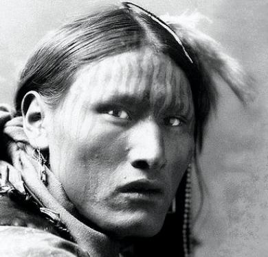 pictures of american indian dog 4 male models picture