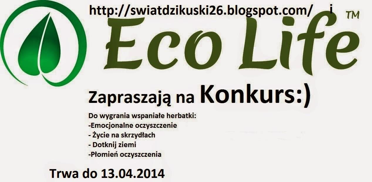 http://swiatdzikuski26.blogspot.com/