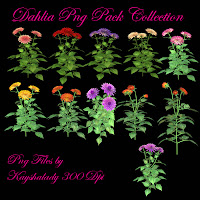 Dahlia PNG Pack Collection