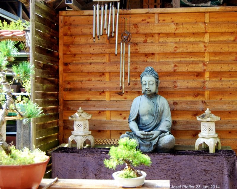 jupp s bonsai blog buddha im garten. Black Bedroom Furniture Sets. Home Design Ideas