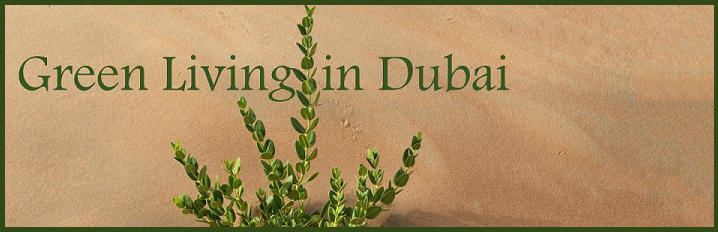 Green Living in Dubai