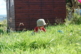 toddler, grass, shed