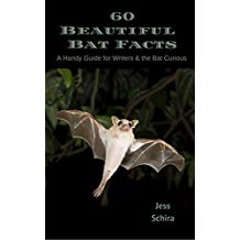 60 Beautiful Bat Facts