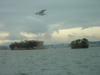 Matsushima island displaying sedimentary layering (Bedding) visible with a seagul in the foreground.