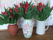 Tulip Love...