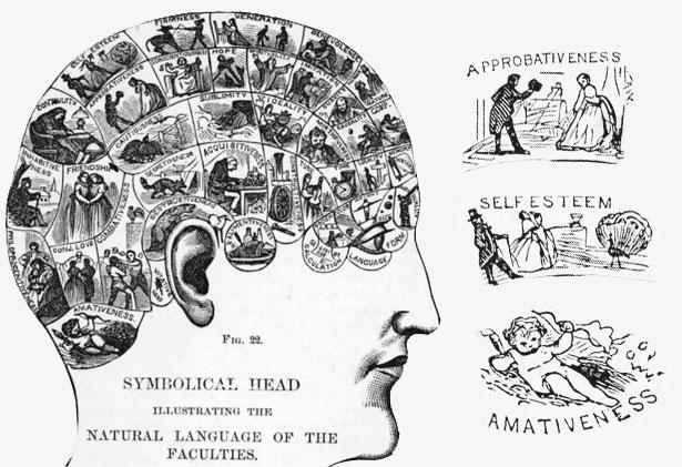Active mind supplement puritan