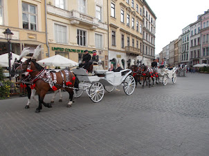 Most beautiful horses and horse carriages in the World at Krakow Old Market Town Square.