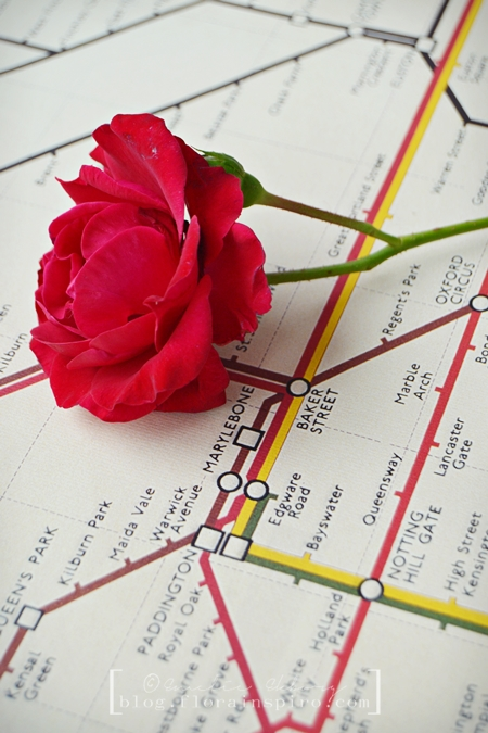 london tube map, poster london tube map, rose london tube map, red rose central line london