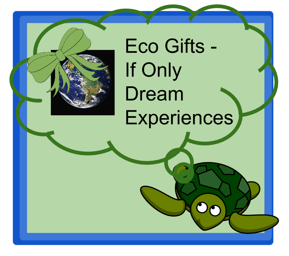image Eco Gift Guide - If Only Dream Experiences on Green Rethik