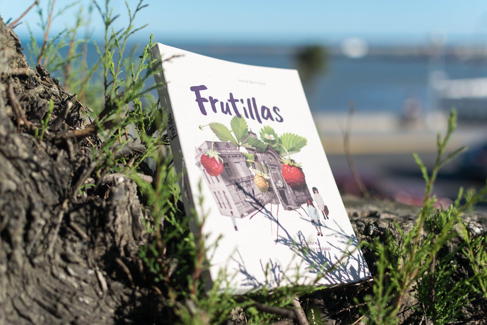 Frutillas, un libro sobre educación y trabajo